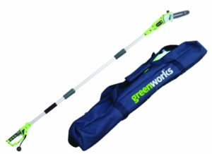 Greenworks 8-Inch 6.5 Amp Corded Pole Saw with Case 20192