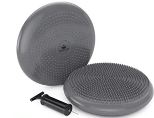 Stability Balance Disk :: Your NEW Bumpy Chair Cushion Disc